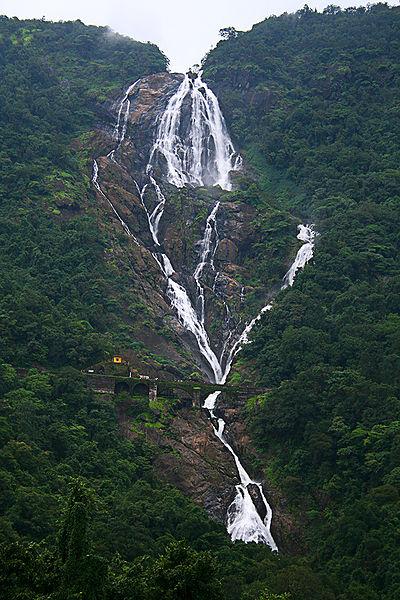 User:Purshi - Wikimedia Commons