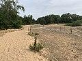 Dunes Charmes Sermoyer 18.jpg