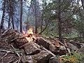 EC Fire at Dinosaur National Monument August 2001 (d2f8870d-14ce-4c51-80cd-1a32f35341e8).jpg