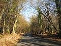 Eatenden Lane - geograph.org.uk - 1171987.jpg
