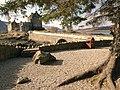 Eilean Donan Castle - geograph.org.uk - 1780171.jpg