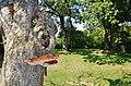 Ein Pilz beim Grillplatz Gerbersheim - panoramio.jpg