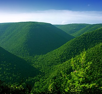 Elk State Forest - Jerry Ridge Vista, Elk State Forest, in Cameron and Clinton Counties