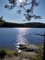 En vacker sjöplats i Tivedens nationalpark.jpg