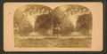 Entrance to St. Augustine, Florida, from Robert N. Dennis collection of stereoscopic views.png