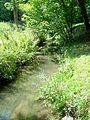Ermenonville (60), parc Jean-Jacques Rousseau, prairie Arcadienne, la Launette, bras ouest.jpg