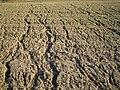 Erosion Netzwerk033.jpg
