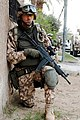 Estonian soldier DA-SD-06-03436 c1.jpg