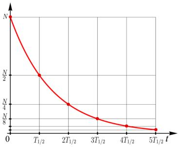 Halbwertszeit – Wikipedia