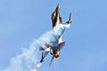 F16 - RIAT 2006 (3070446437).jpg