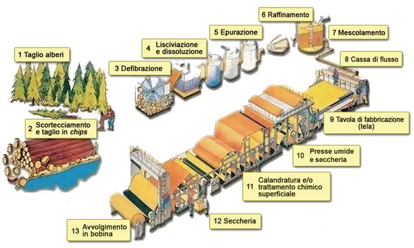 Schema della produzione di carta, dal legno alle bobine attraverso una