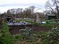 Fairacres allotments with hut - geograph.org.uk - 723856.jpg