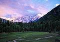 Fairy Meadows, Raikot, Pakistan at dusk.jpg