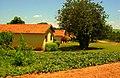 Fazenda de Laranja - panoramio.jpg
