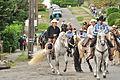 Fiestas Patrias Parade, South Park, Seattle, 2015 - 262 - the horses (20973050414).jpg