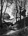 Fir Trees in Les Trembleaux, near Marlotte (Sapins aux Trembleaux à Marlotte) MET ep1975.1.183.bw.R.jpg