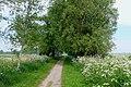 Fischland, Dierhagen03.jpg