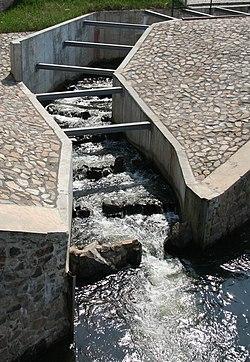 Fischtreppe Penig Auslauf.jpg