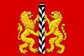 Flag of Ilansky District.png