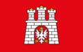 Flaga Miasto Zgierz.png