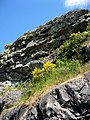Fleming climbing rock. MORE INFO IN PANORAMIO-DESCRIPTION - panoramio.jpg