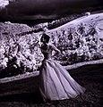 Flickr - …trialsanderrors - Toni Frissell, Tryall Plantation, Jamaica, 1948.jpg