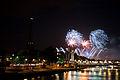 Flickr - Whiternoise - Bastille Day Fireworks, 2010, Paris (9).jpg