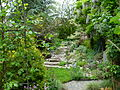 Flickr - brewbooks - Our garden - looking up the stairs.jpg