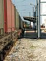 Flickr - nmorao - Areia, Estação de Alcácer, 2008.03.11 (1).jpg