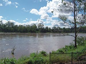 Cyclone Oswald - Brisbane River close to its peak at Seventeen Mile Rocks, Brisbane.