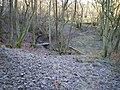 Footbridge in the woods - geograph.org.uk - 1075669.jpg