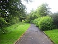Footpath - geograph.org.uk - 3123768.jpg