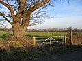 Footpath near Crewe by Farndon - geograph.org.uk - 351001.jpg