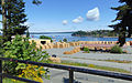 Forest-products-ready-for-shipping-at-Chemainus.jpg