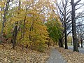 Forest Park, Queens, NY, USA - panoramio (2).jpg