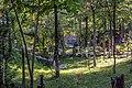 Forest of Gabala.jpg