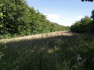 Dunsland Cross railway station - Course of the old railway near Dunsland Cross station.