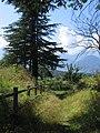 Forte Fuentes 08-2008 - panoramio - adirricor (5).jpg