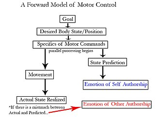 Intrapersonal communication - A forward model of motor control. Notice that a prediction of the future state is made just before the movement occurs. Presumably that efference copy is used to establish agency.