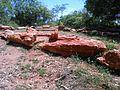 Fossil woods arranged in the forest at tiruvakkarai.jpg