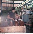 Fotothek df n-15 0000315 Facharbeiter für Sintererzeugnisse.jpg