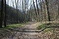 Frühlingsrundwanderung Schmücke bei Heldrungen am Waldschlösschen Quelltal - panoramio.jpg