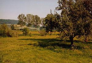 Domrémy-la-Pucelle - Image: France Domremy Countryside