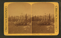 Francis Academy, from Robert N. Dennis collection of stereoscopic views.png