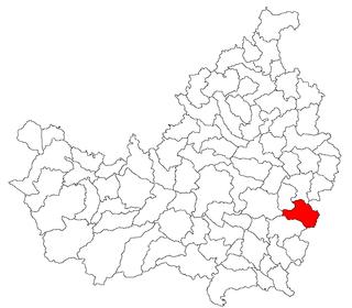 Frata Commune in Cluj, Romania