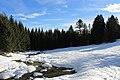 Fruitières de Nyon in winter - panoramio (46).jpg