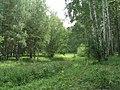 G. Miass, Chelyabinskaya oblast', Russia - panoramio (47).jpg