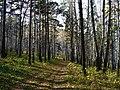G. Miass, Chelyabinskaya oblast', Russia - panoramio (75).jpg
