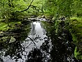 Ganllwyd NNR - panoramio (6).jpg