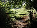 Gateway to field near Barberry Farm - geograph.org.uk - 1516424.jpg